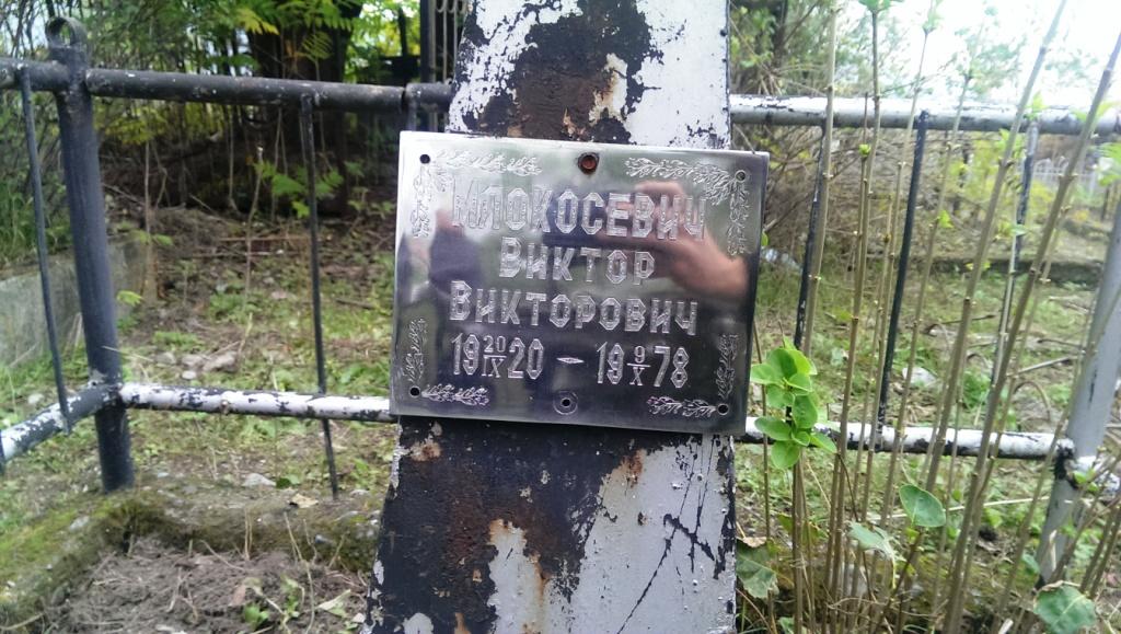 pomnik wnuka i wnuczki młokosiewicza