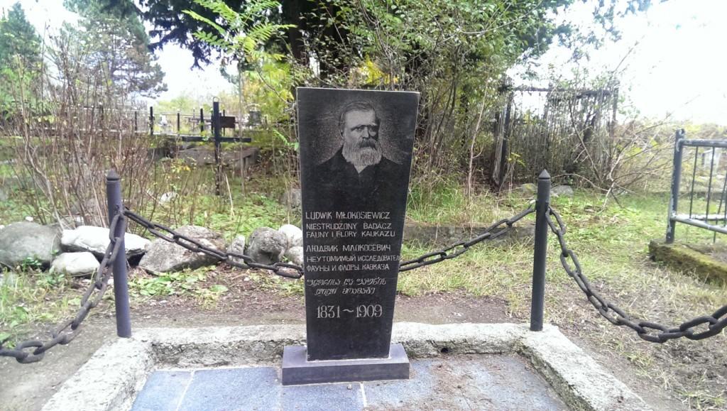 Grób Ludwika Młokosiewicza