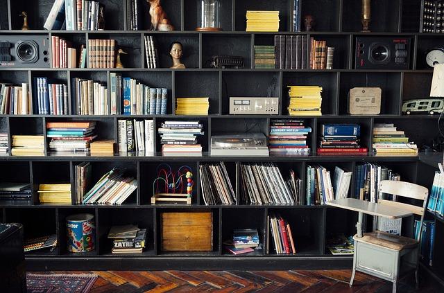 bookshelf-413705_640