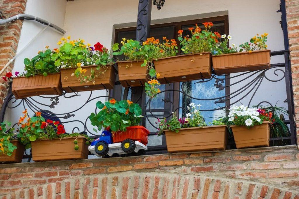 dekoracje balkon Mccheta kwiaty