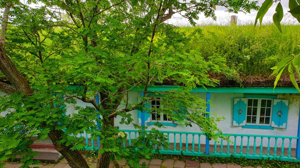 gorelovka duchoborcy gruzja malowana chata