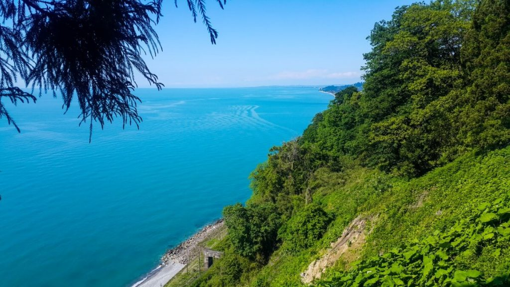 Batumi Morze Czarne Batumski Ogrod Botaniczny